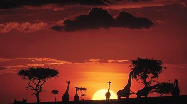 kenya avventura
