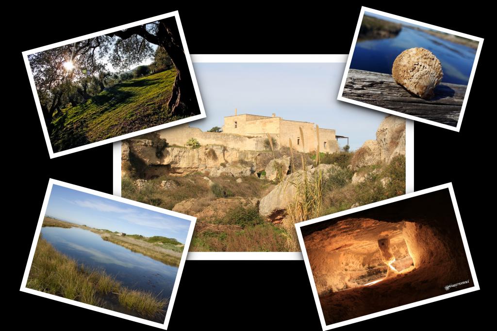 collage i fiumi di pietra