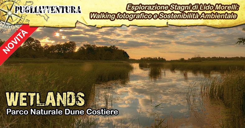 cover evento FB 2020 - wetlands Morelli