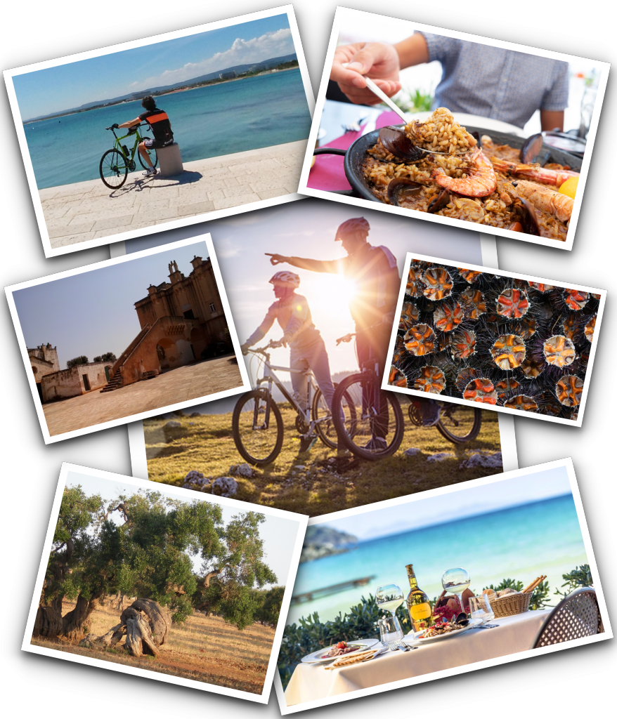 Puglia guided cycle tours - Bike and Tasting