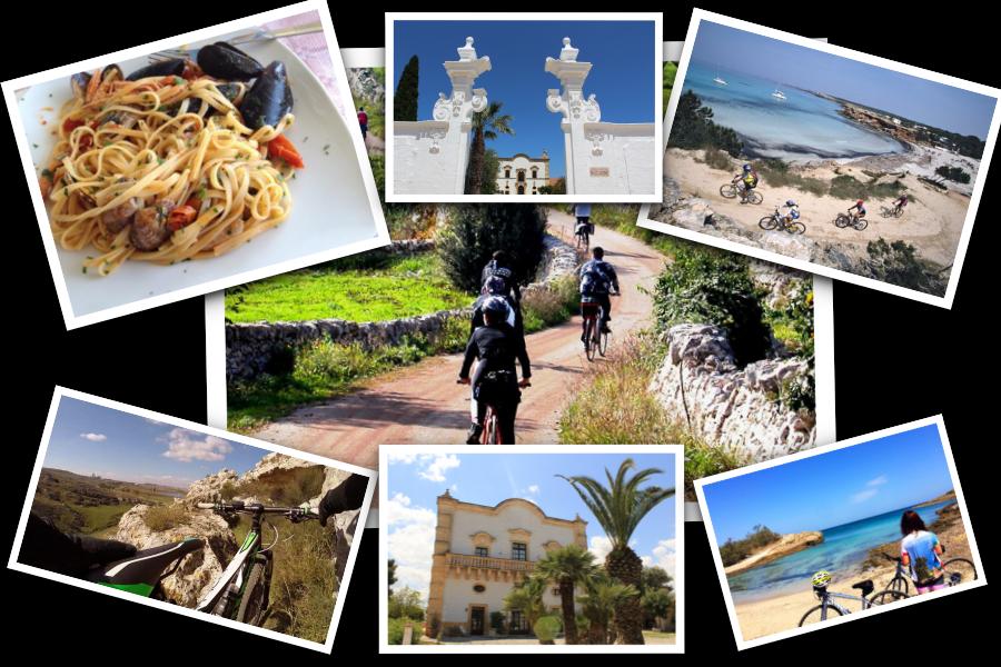 Escursioni Bici Puglia Mountain Bike Cicloturismo